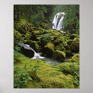 North America, USA, Alaska. A waterfall and Poster