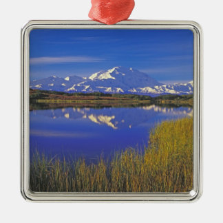 North America, USA, Alaska, Denali NP, Metal Ornament