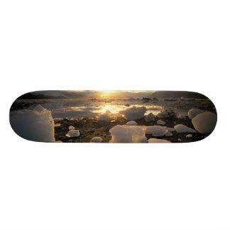 North America, USA, Alaska, Ice Bay, Icescape, Skateboard
