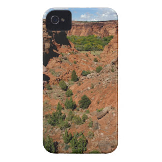 North America, USA, Arizona, Navajo Indian iPhone 4 Cases