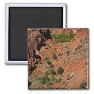 North America, USA, Arizona, Navajo Indian Square Magnet