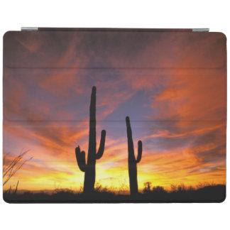 North America, USA, Arizona, Sonoran Desert. iPad Cover