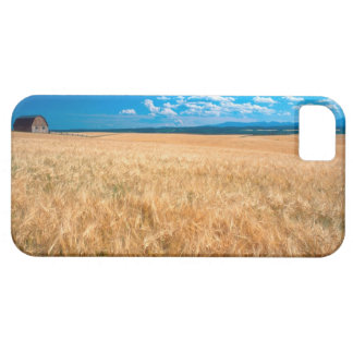 North America, USA, Idaho. Barley field in Case For The iPhone 5