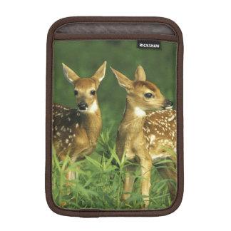 North America, USA, Minnesota. White-tailed 2 iPad Mini Sleeve