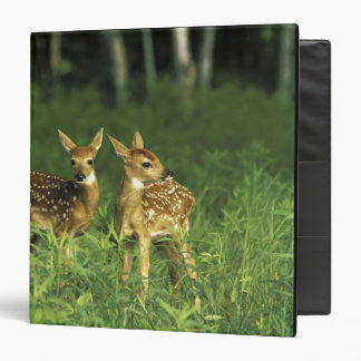 North America, USA, Minnesota. White-tailed 2 Vinyl Binder