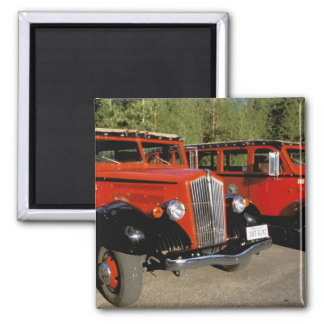 North America, USA, Montana. Classic 1934 Ford Square Magnet
