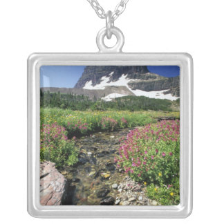 North America, USA, Montana, Glacier National 3 Silver Plated Necklace