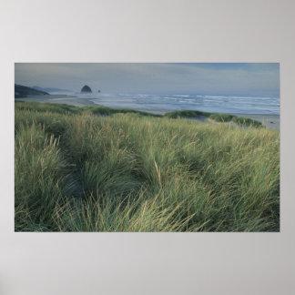 North America, USA, Oregon, Canon Beach, Poster