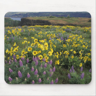 North America, USA, Oregon, Columbia River 2 Mouse Pad