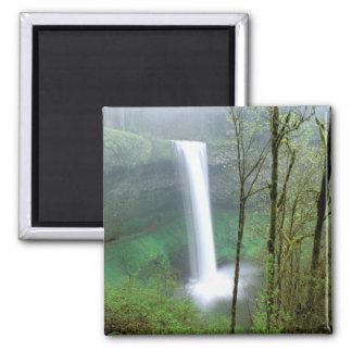 North America, USA, Oregon, Silver Falls State Square Magnet