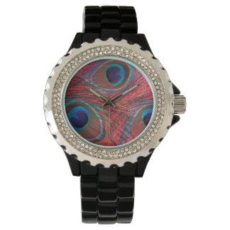North America, USA, WA, Redmond, Peacock Watch