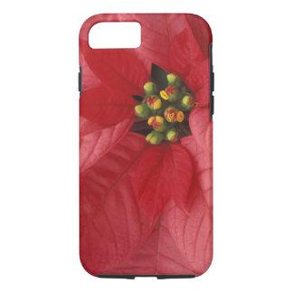 North America, USA, WA, Woodinville, Red 2 iPhone 7 Case