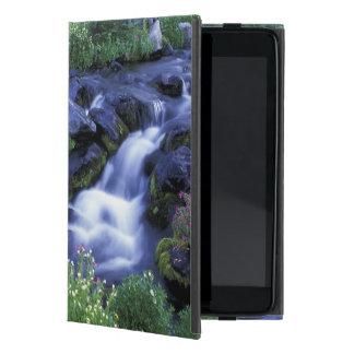 North America, USA, Washington, Mt. Rainier 3 Covers For iPad Mini