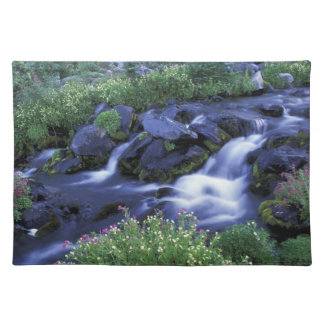 North America, USA, Washington, Mt. Rainier 3 Placemat