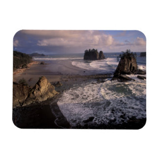North America, USA, Washington, Olympic NP, Rectangular Photo Magnet