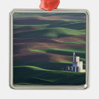 North America, USA, Washington, Palouse. The Metal Ornament