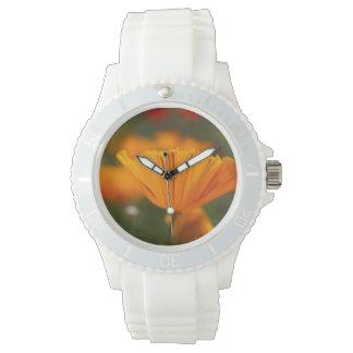 North America, USA, Washington, Seattle, Summer Wrist Watches
