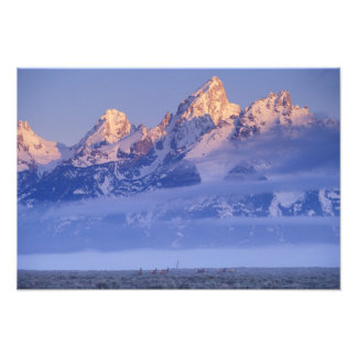 North America, USA, Wyoming, Grand Teton NP, Photo Art