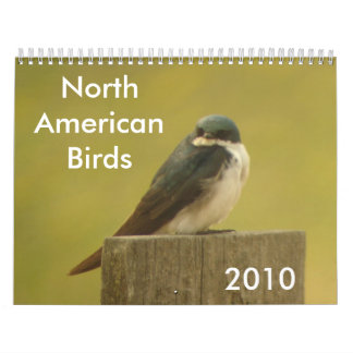 North American Birds 2010 Calendar