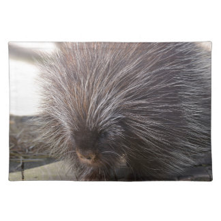 North American porcupine Placemat