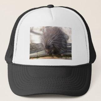 North American porcupine Trucker Hat