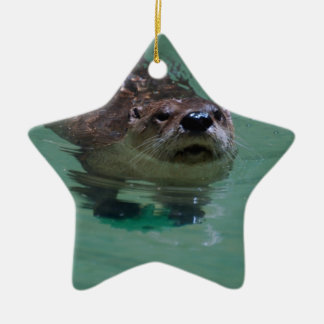 North American River Otter Ceramic Ornament