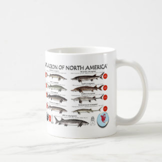 North American Sturgeon RedList Mug