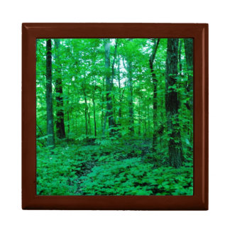 North American Subtropical Forest Keepsake Box