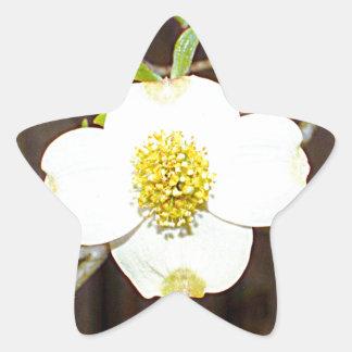 North Carolina Dogwood Star Sticker