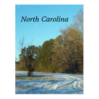 North Carolina Winter Snow Scene Postcard