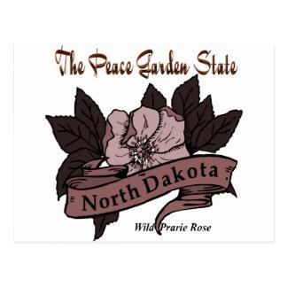 North Dakota Peace Garden State Prarie Rose Postcard