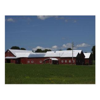 North Hero, Vt. farm Postcard