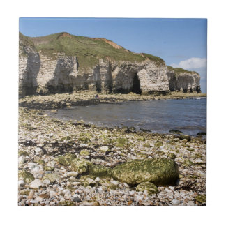 North Landing at Flamborough in Yorkshire photo Tile