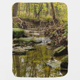 North Wears Creek Baby Blanket