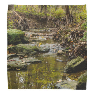 North Wears Creek Bandana