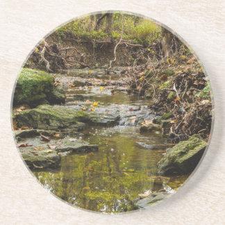 North Wears Creek Coaster