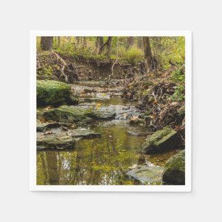North Wears Creek Paper Napkin