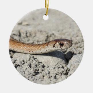 Northern Brown Snake Round Ceramic Ornament