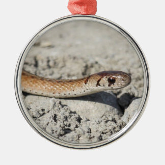 Northern Brown Snake Silver-Colored Round Ornament