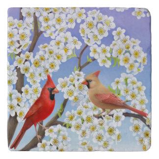 Northern Cardinal Birds Stone Trivet