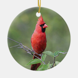 Northern cardinal ceramic ornament