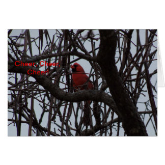 Northern Cardinal, Cheer, Cheer, Cheer Card