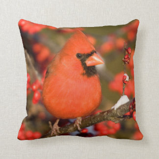 Northern Cardinal in Common Winterberry Throw Pillow