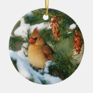 Northern Cardinal in tree, Illinois Round Ceramic Ornament