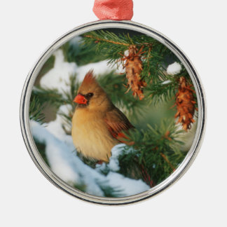 Northern Cardinal in tree, Illinois Silver-Colored Round Ornament