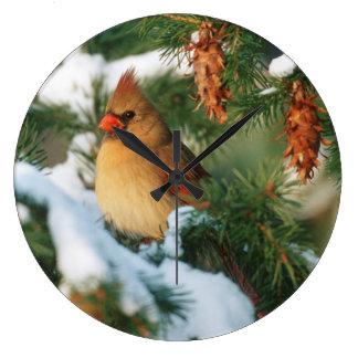 Northern Cardinal in tree, Illinois Wall Clocks