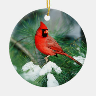 Northern Cardinal male on tree, IL Round Ceramic Ornament