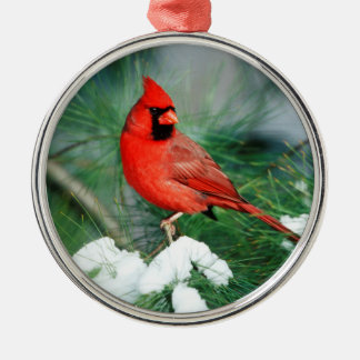 Northern Cardinal male on tree, IL Silver-Colored Round Ornament