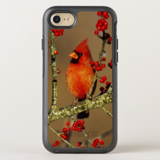 Northern Cardinal male perched, IL OtterBox Symmetry iPhone 7 Case
