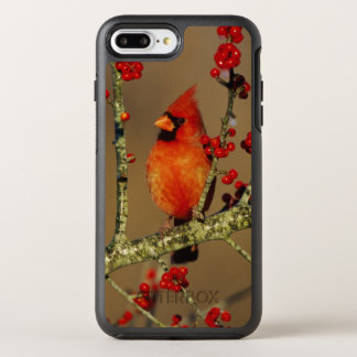 Northern Cardinal male perched, IL OtterBox Symmetry iPhone 7 Plus Case